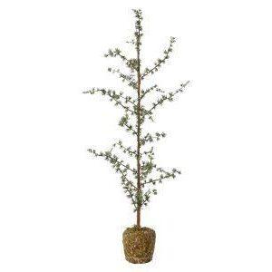 Cedertræ 95 cm.