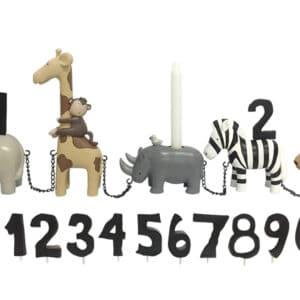 Safari, fødselsdagstog