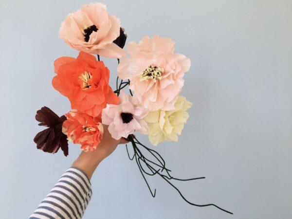 Poppy miljøbillede nude