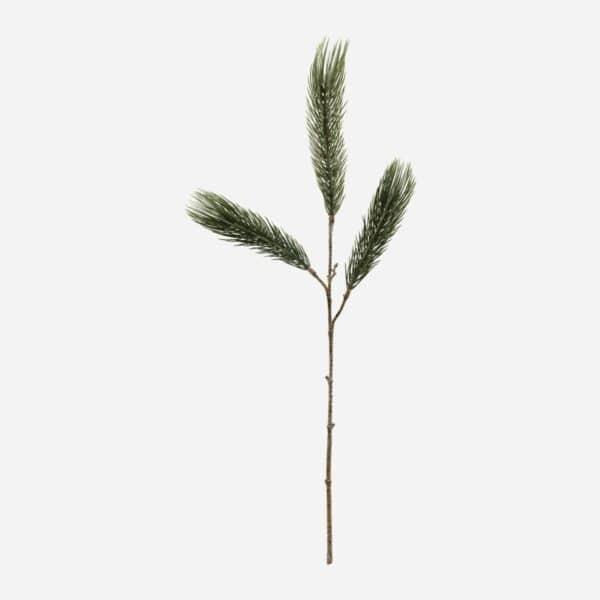 Shopbillede Pine tree gren